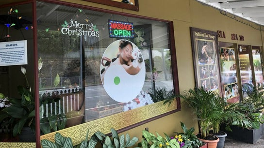 Siam Spa Thai Massage, Remedial Massage and Spa - Norman Park 3