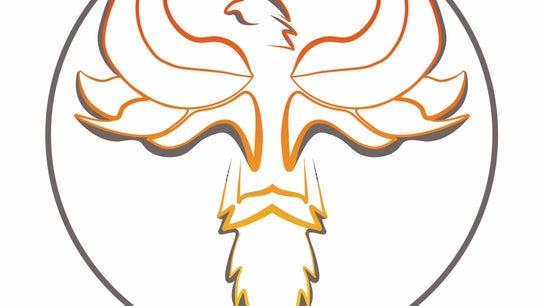 Inner Phoenix Coaching