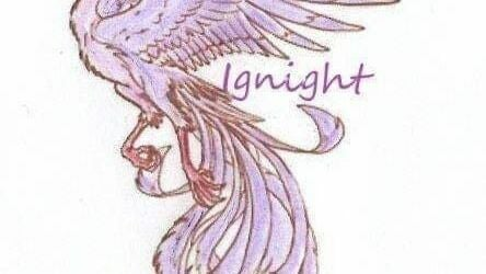 Ignight Mobile Beauty and Holistic