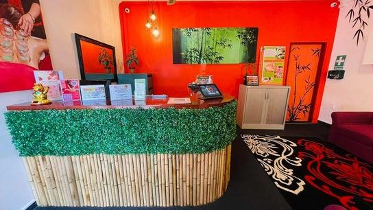 Bamboo Spa Wellington