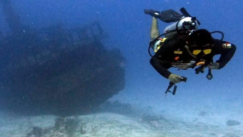 BlackTip Diving