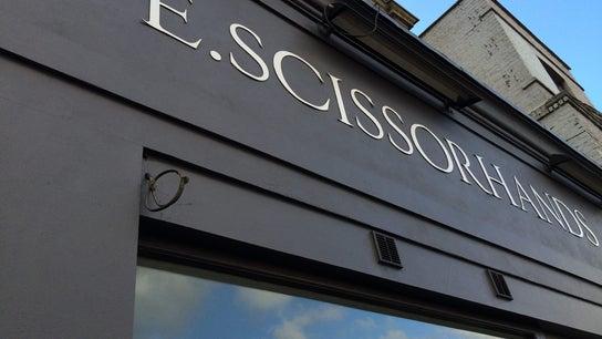 E.Scissorhands